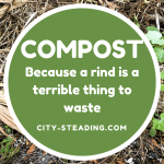 Compost, because a rind is a terrible thing to waste