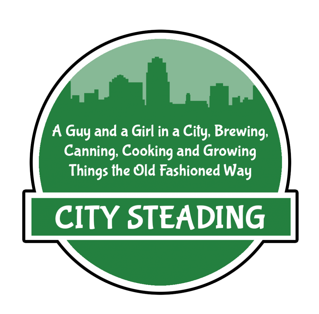 citysteading-1024x1008.png